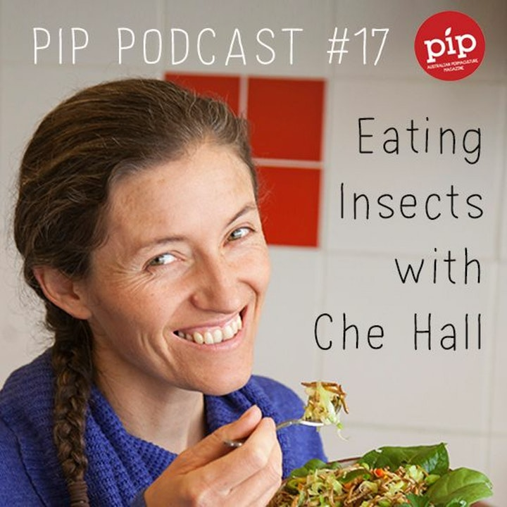 Pip Permaculture Podcast #17: Eating Insects with Che Hall