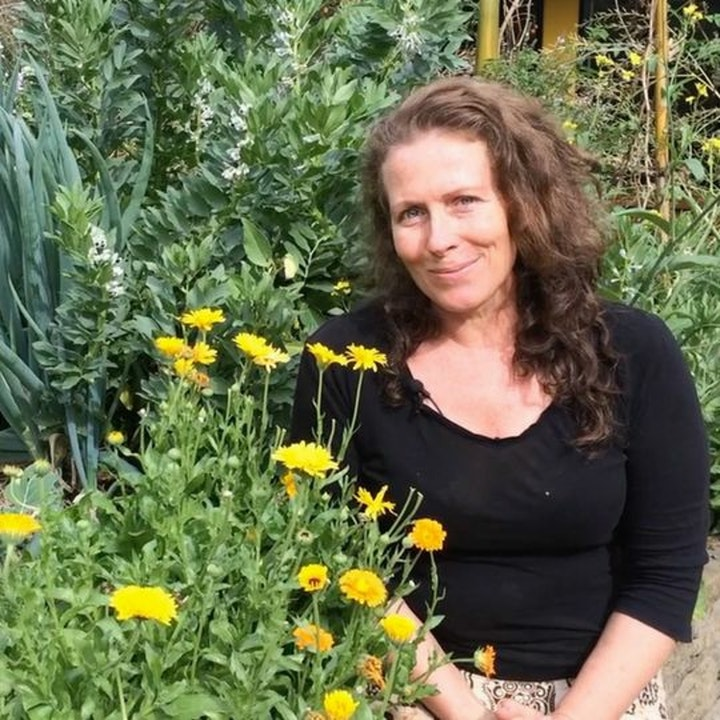 Pip Podcast #24 with Morag Gamble: Our Permaculture Life.