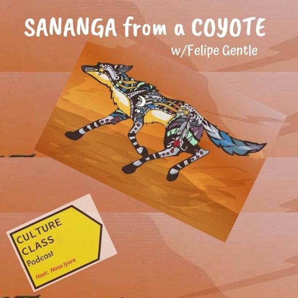 Ep 039- Sananga from a Coyote (w/Felipe Gentle)