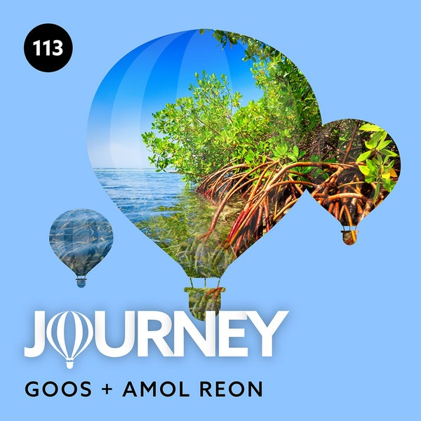 Journey - Episode 113 - Guestmix by Amol Reon