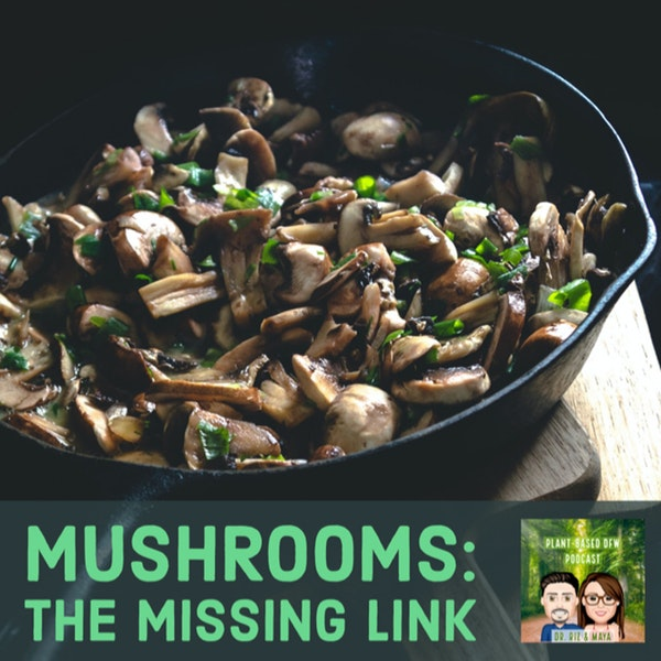 53: The Amazing Benefits of Mushrooms with Jeff Chilton Image