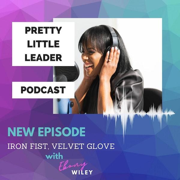 Iron Fist...Velvet Glove Image