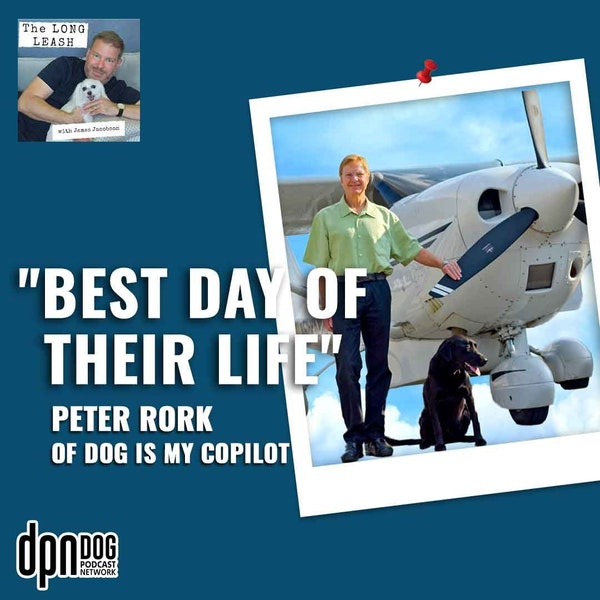 """""""Best Day of Their Life"""" Peter Rork of Dog is My CoPilot 