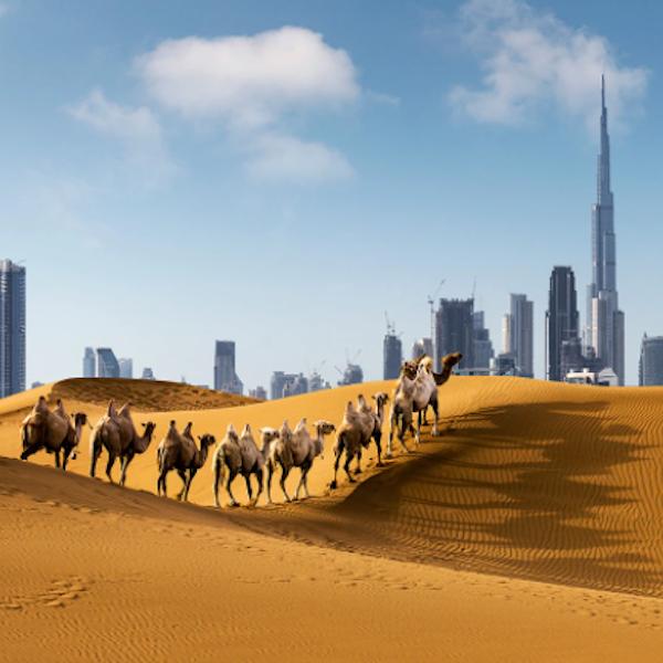 Çölde Bir Vaha: Dubai - Efsanemühendis Anlatıyor