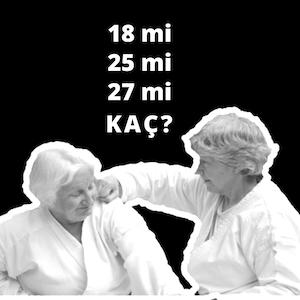 Bölüm 14: 18 mi 25 mi 27 mi kaç?