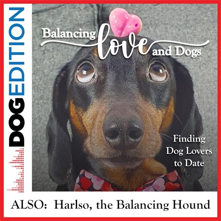 Balancing Love & Dogs   Dog Edition #10