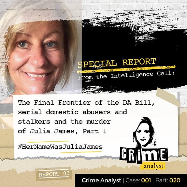 20: Special Report from the Intelligence Cell | The Final Frontier of the Domestic Abuse Bill, Serial Domestic Abusers and Stalkers and Julia James' Murder, Part. 1