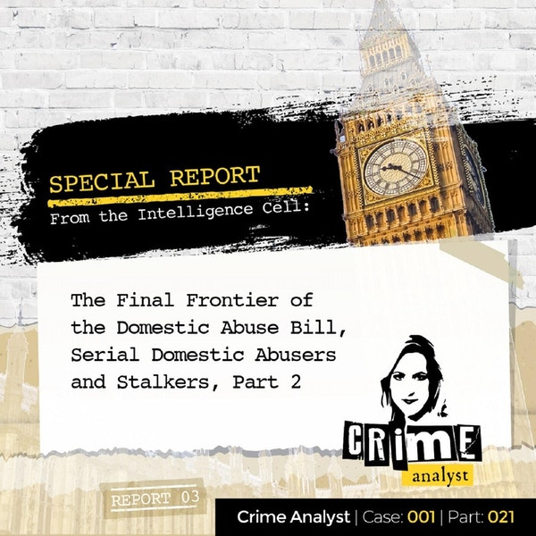 21: Special Report from the Intelligence Cell | The Final Frontier of the Domestic Abuse Bill, Serial Domestic Abusers and Stalkers, Part 2 Image