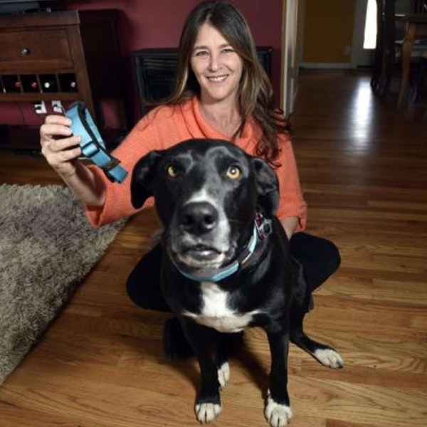 468 - Susan Sierota (Waggit) On Building a Health and Well-Being Monitor For Dogs Image
