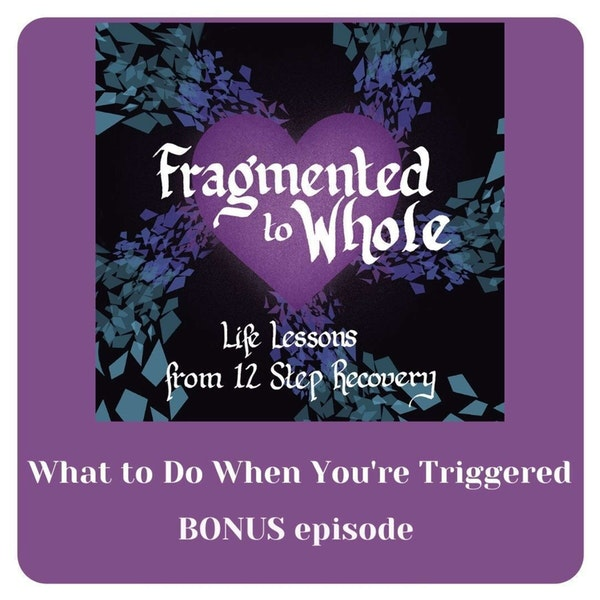 What to Do When You're Triggered   Bonus #3