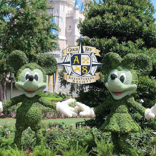 Theme Park Hide and Seek