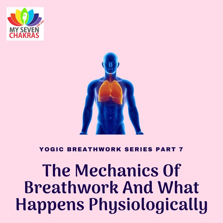 Episode image for The Mechanics Of Breathwork And What Happens Physiologically With AJ