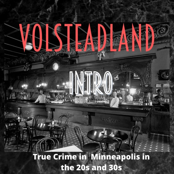 Volsteadland: Introduction Image