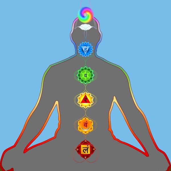 Sasha Fenton: Your chakras and your health Image