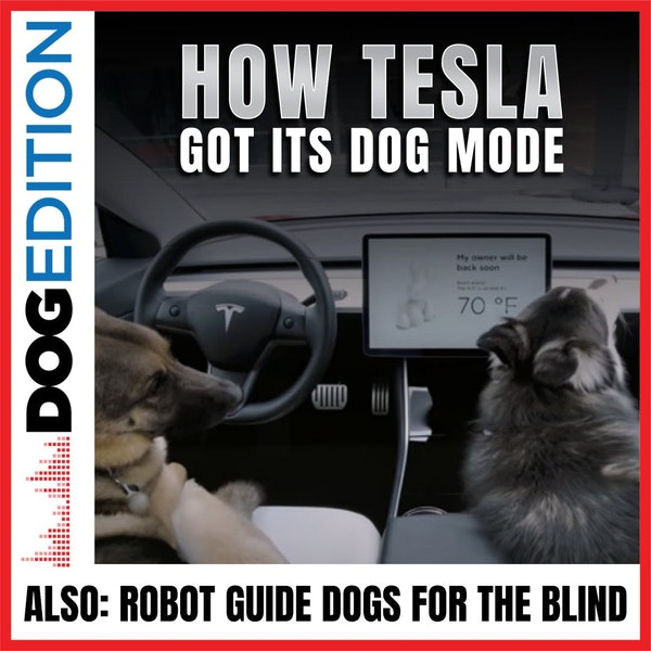 How Tesla Got Its Dog Mode | Robot Guide Dogs For The Blind | Dog Edition #25