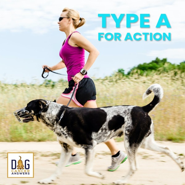 How Type A for Action Treats Dog Cancer | Molly Jacobson Deep Dive