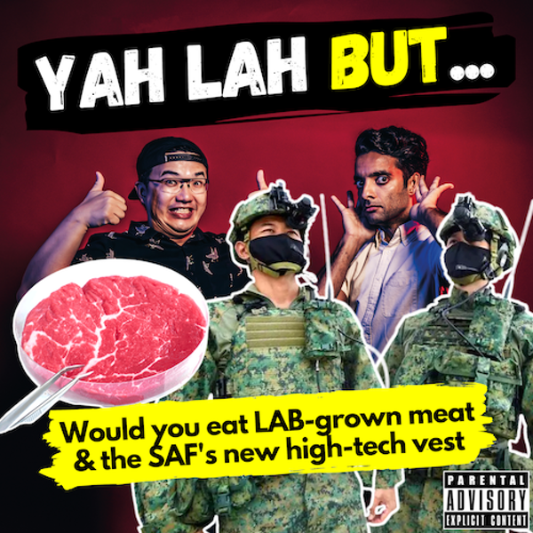 YLB #110 - Singapore becomes the 1st country to approve lab-grown meat & SAF NSFs get new army vests Image