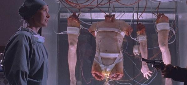 EP24 - Body Parts Image