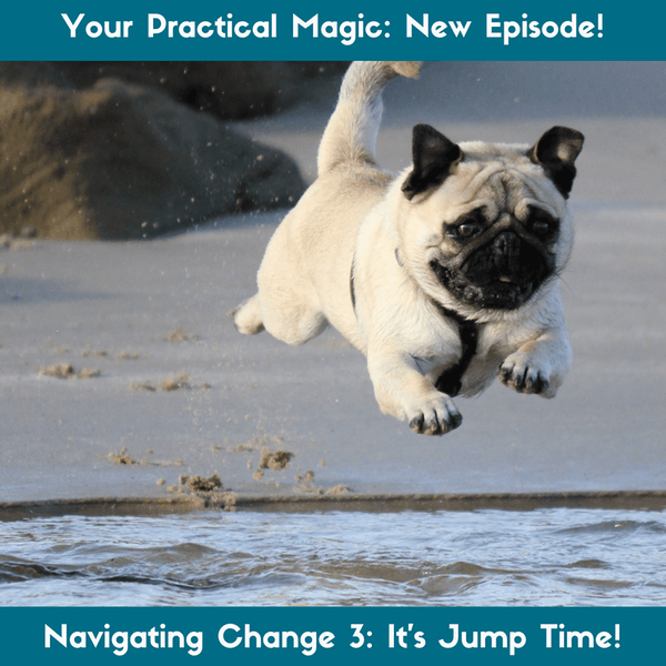 Navigating Change Part 3: It's Jump Time