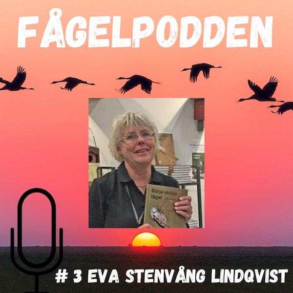 #3 Eva Stenvång Lindqvist