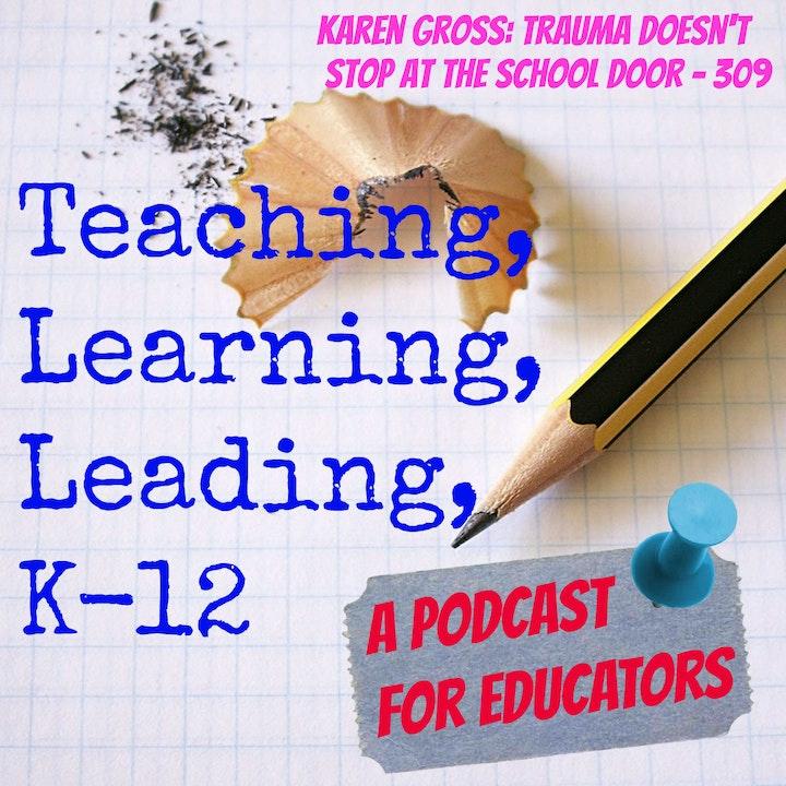 Episode image for Karen Gross: Trauma Doesn't Stop at the School Door - 309