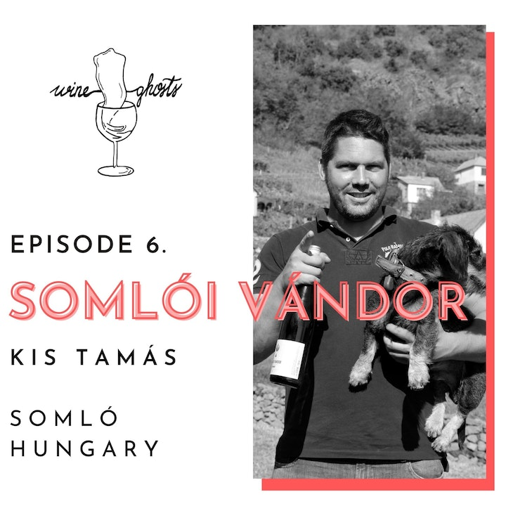 """Ep 6. / Somlói Vándor aka Tamás Kis, about winemaking on """"the most volcanic hill of all"""""""