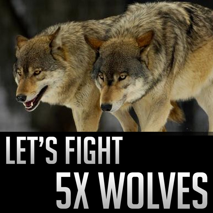 049 - Let's Fight - 5x Wolves