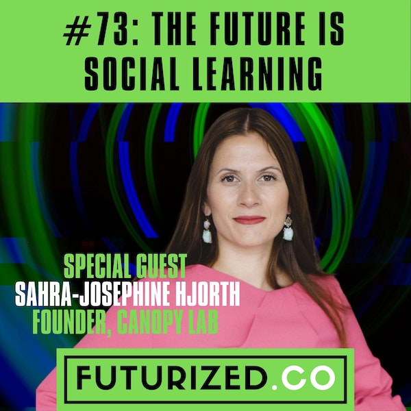 The Future of Social Learning Image
