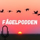 The fagelpodden's Podcast Album Art