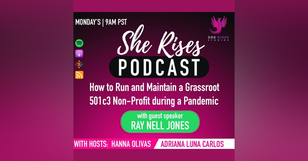 How to Run and Maintain a Grassroot 501c3 Non-Profit during a Pandemic with Ray Nell Jones