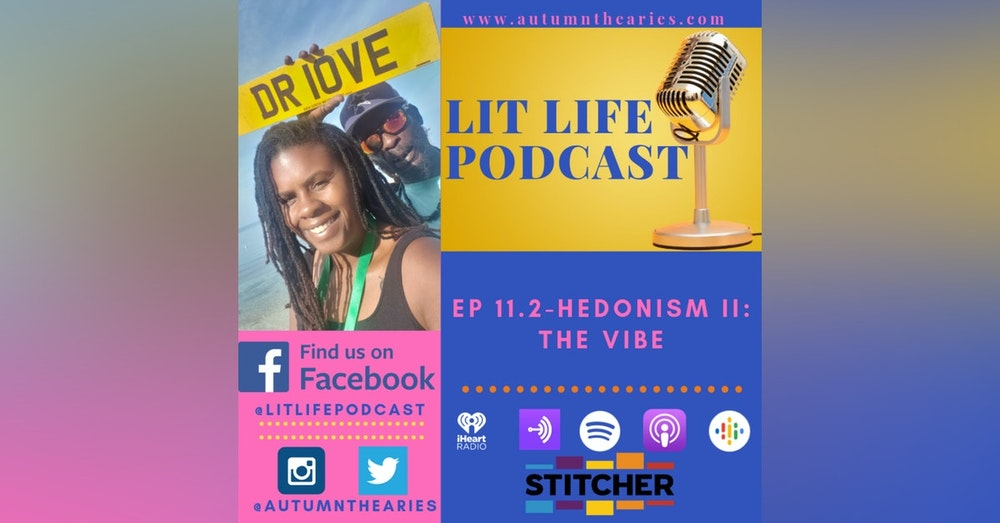 EP 11.2 - Hedonism II : The Vibe