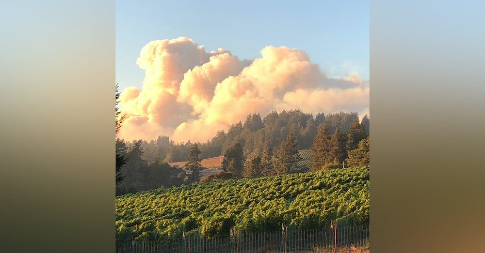 Wine Country Wildfires: the ungovernable State of California
