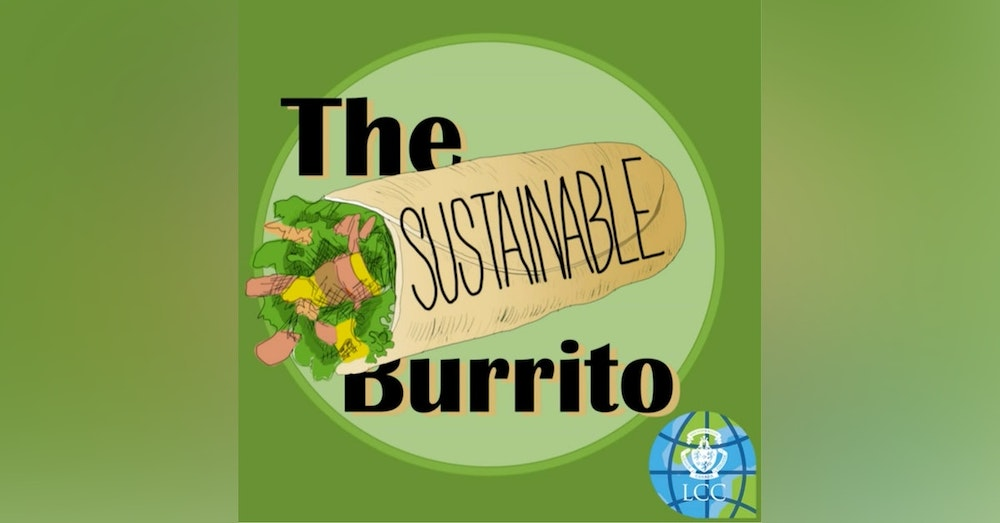 Introducing The Sustainable Burrito