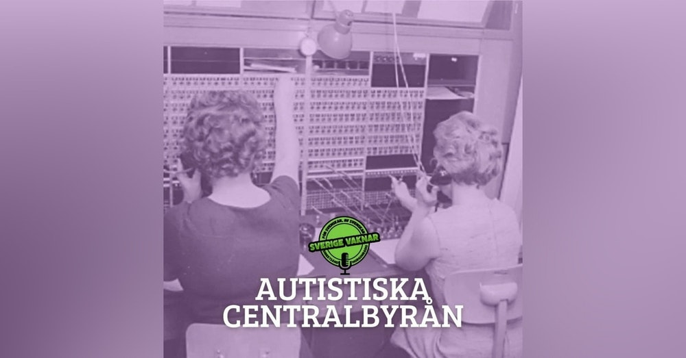338. Autistiska centralbyrån