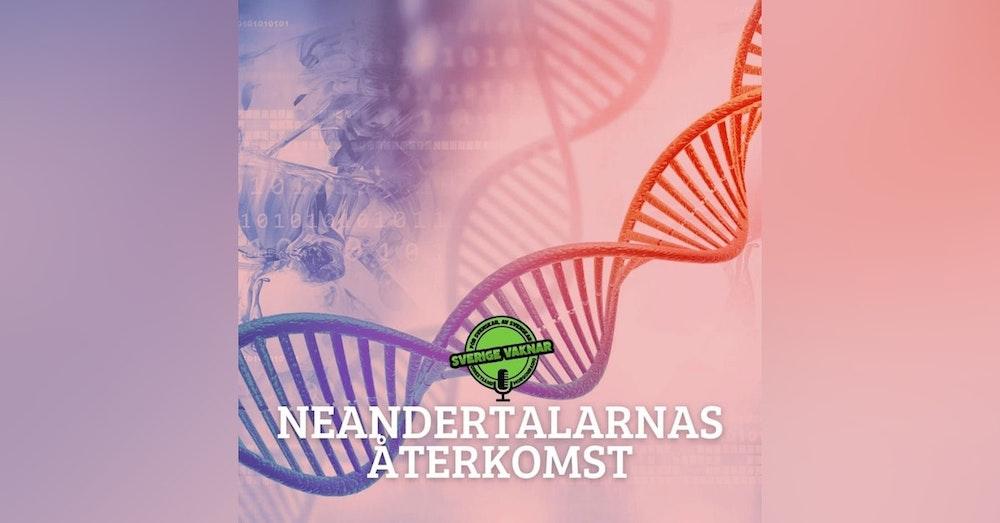 340. Neandertalarnas återkomst