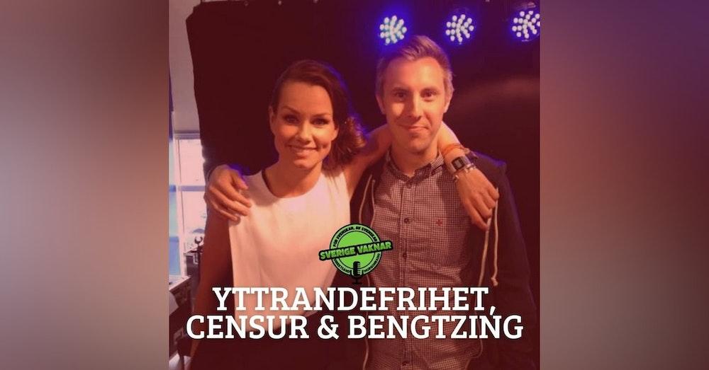 334. Yttrandefrihet, censur och Bengtzing