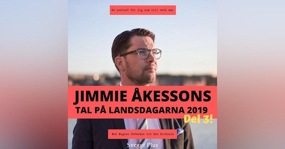 Om Jimmie Åkessons tal på Landsdagarna 2019 (del 3)