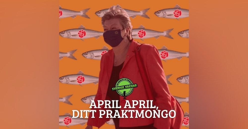 350. April april, ditt praktmongo