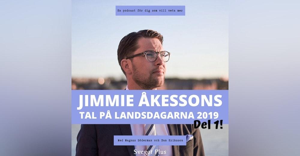 Om Jimmie Åkessons tal på landsdagarna 2019 (del 1)