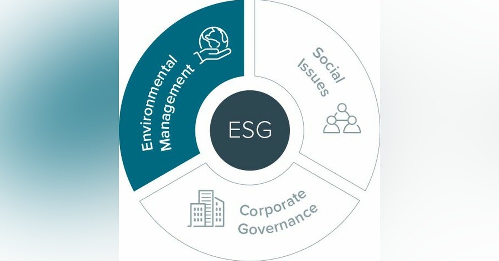 요즘 ESG 모르면 간첩 - 대기업 - 스타트업 - 은행권도 관심