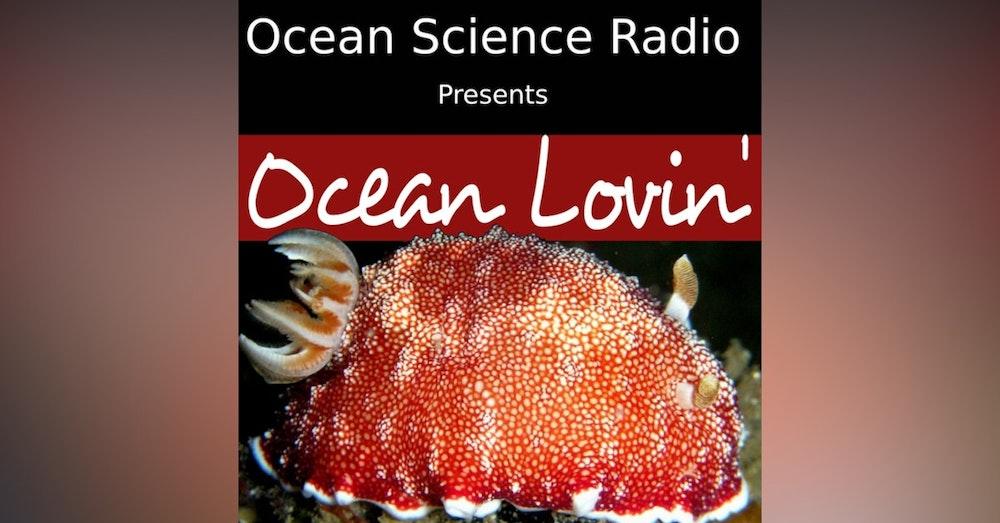 Ocean Lovin 2021 - The Sex Lives of Nudibranchs