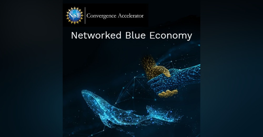 National Science Foundation's Networked Blue Economy Ocean Accelerator