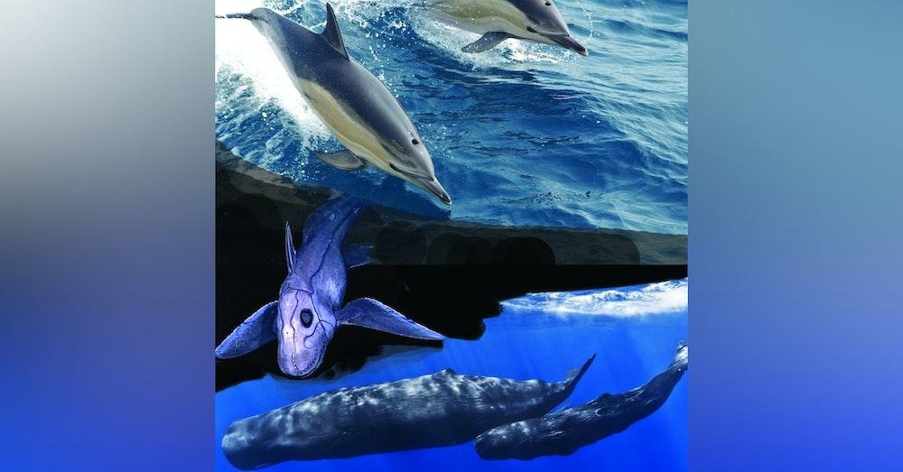 Ocean Lovin 6