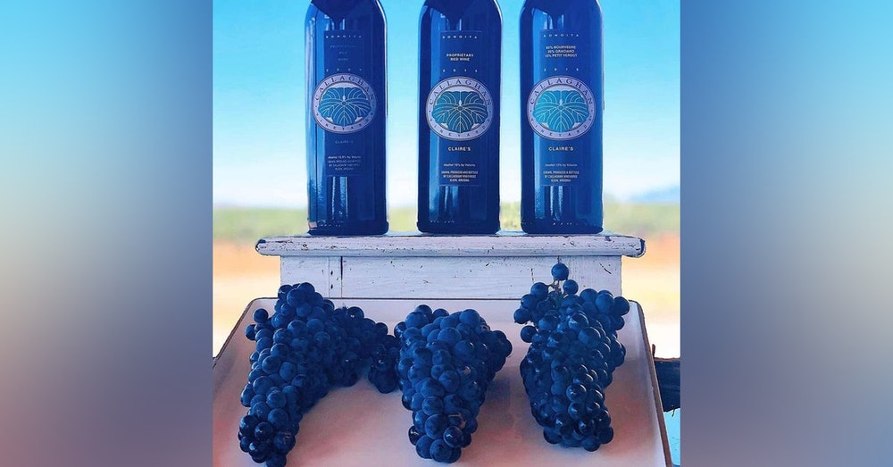 Callaghan Vineyards- Elgin, AZ Pt. 2