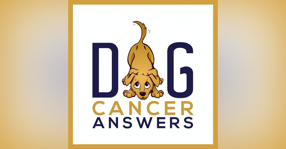 All Natural, Homeopathic & Holistic Approaches to Dog Cancer Care