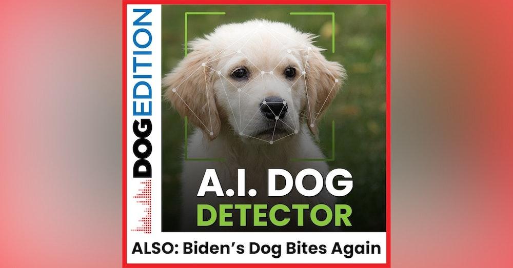 AI Dog Detector | Dogs Bond | Biden's Dog Bites Again | Dog Edition #13