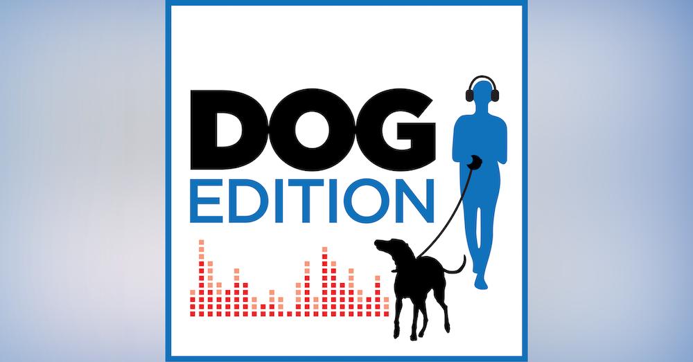 Ep. 1 Trailer: In-dog-ural Show