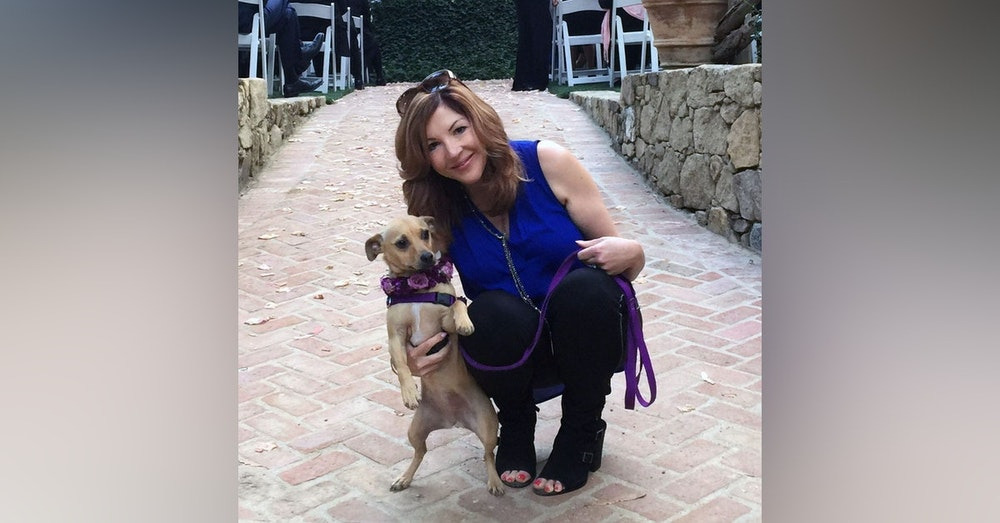 """Interview with Laura Vorreyer author of """"The Pet Sitter's Tale"""""""