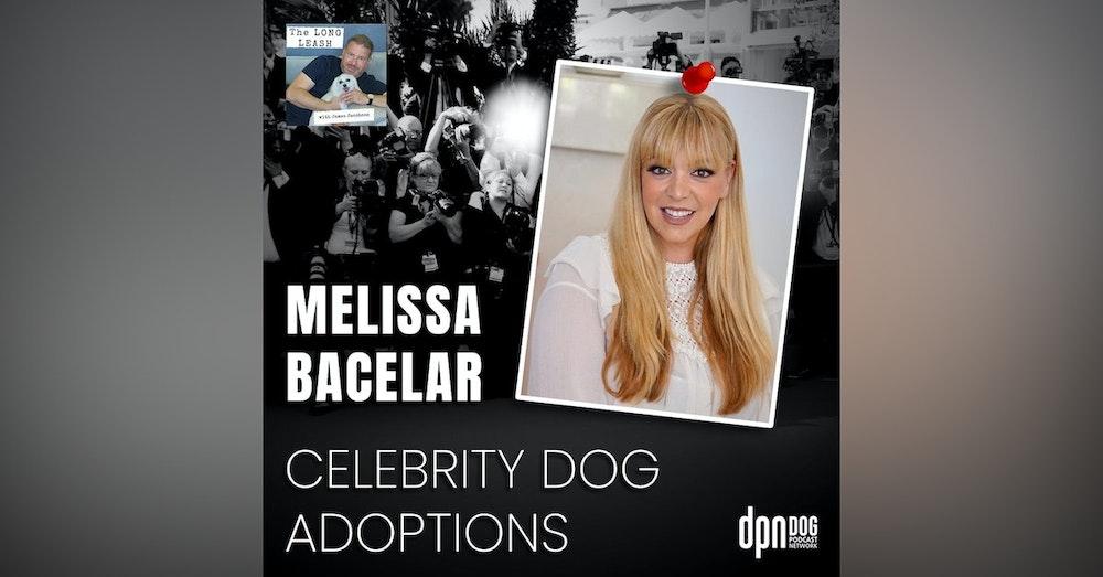 Celebrity Dog Adoptions with Melissa Bacelar | The Long Leash #21