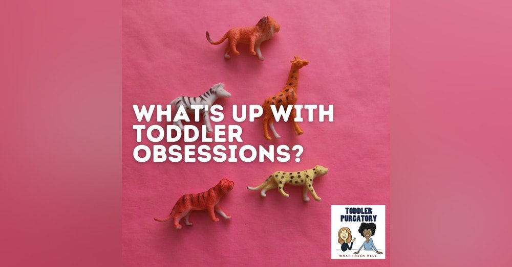 What's Up With Toddler Obsessions?